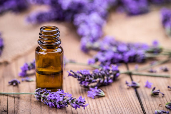 5 Best Essential Oils For Anxiety